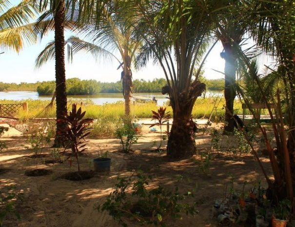 Bolongs Passions 7